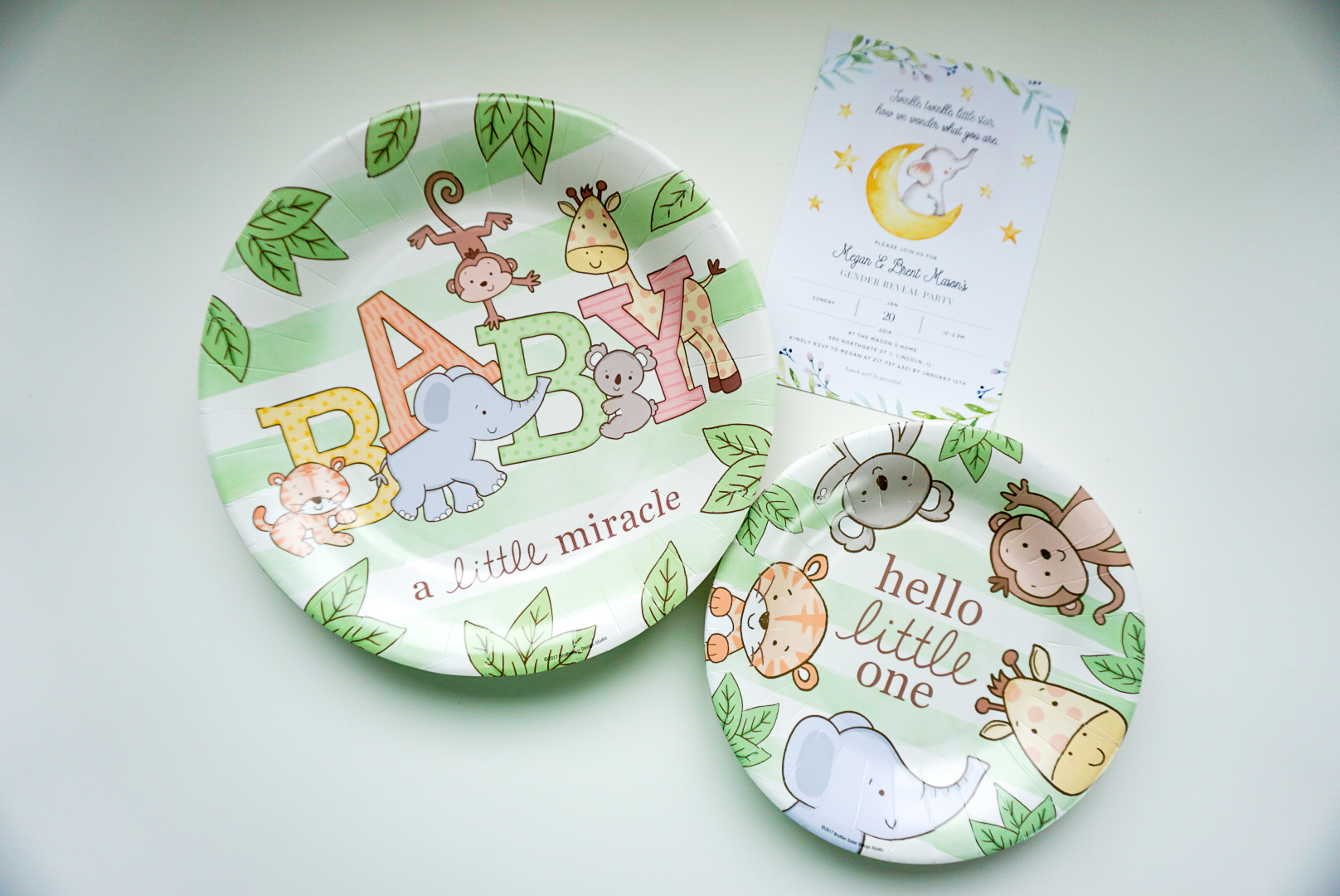 gender reveal party plates, animal baby party plates, safari baby party plates
